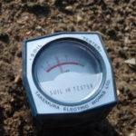 土の酸度の確認と調整