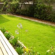 芝生の種類と用途