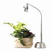 植物育成用ライト