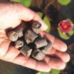 植物の栄養、肥料の基礎知識