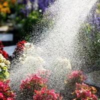 ガーデニングの水やり方法とコツ