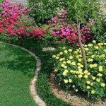 花壇デザインの基本