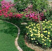 花壇デザイン